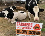 Farmers Use Rural Roads Safety Week To Urge Drivers To Be Cautious
